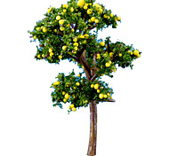 Model & Building Toy Doll Toy Grapefruit tree