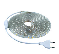 5m 220V SMD 5050 led strip light+Power plug,white/warm white/green/blue/red,60leds/m 300led waterproof  led Strips