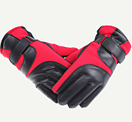 Ski Gloves / Cycling Gloves Winter Gloves Unisex Keep Warm Ski & Snowboard Red / Blue Canvas Free Size