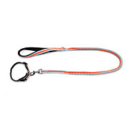 Dog Collar / Leash Reflective / Adjustable/Retractable / Safety / Soft / Fluorescent / Running Solid Green / Orange Nylon