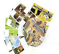 Accesorio de Magia Hobbies de Tiempo Libre Circular Plástico Amarillo Para Chicos Para Chicas 14 años y Más