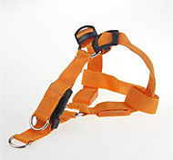 Dog Harness LED Lights Strobe/Flashing Solid Orange Nylon