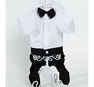 Собака Брюки Одежда для собак Очаровательный Мода Полоски Черный