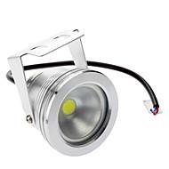 Vedenpitävä 10W 800-900LM 6000-6500K Natural White Light LED Flood lamppu (DC / AC 12V)