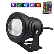10 W RGB φως μαύρο φακό υποβρύχιο φως κρήνη (12v-24v)