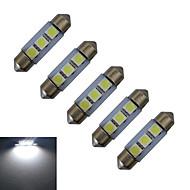 Festone Luci da arredo 3 SMD 5050 60lm lm Luce fredda DC 12 V 5 pezzi