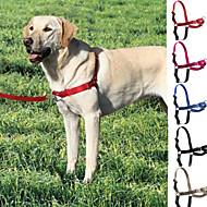 Hunde Geschirre / Leinen / Hundehalsband Regolabile/Einziehbar Rot / Schwarz / Blau / Grau / Rose Nylon / Plastik / Edelstahl