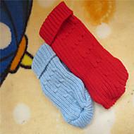 개 스웨터 레드 / 블루 겨울 솔리드