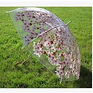 장대 우산