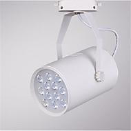 12w 1200lm 3000K / 4000K / 6000K led radan katto paikalla lamppu (ac220-240v)