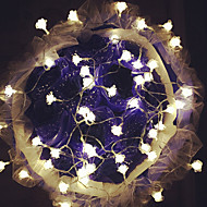 100 주도 10m 장미 방수 플러그 야외 크리스마스 휴가 장식 조명 문자열 조명을 LED 조명