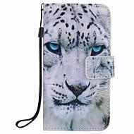 ל ארנק / מחזיק כרטיסים / עם מעמד מגן גוף מלא מגן חיה קשיח דמוי עור Samsung A5(2016) / A3(2016)