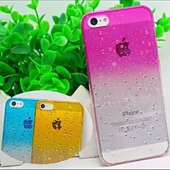 아이폰 5 / 5S 물 투명 단색 백 커버 케이스 (모듬 된 색상)