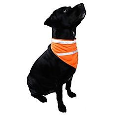 Gatos Perros Collares Corbata/Pajarita Ropa para Perro Invierno Verano Primavera/Otoño Un Color Rayas Moda Casual/Diario Naranja Amarillo