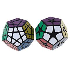 Shengshou® Cube de Vitesse  Megamix Vitesse Niveau professionnel Cubes magiques Noir Blanc Autocollant lisse Anti-pop ressort réglable ABS
