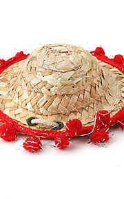 Mexican Style Straw Hat for Dogs (Assorted Colors, Sizes)