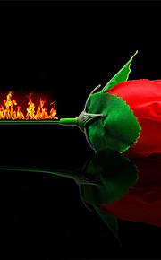 levantou-se em adereços magia de fogo