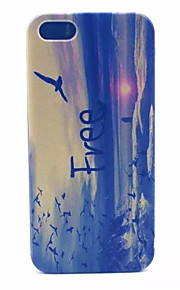 Soar Pattern Transparent Frosted PC Back Cover For  iPhone 5/5S