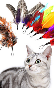 Bird Replacement Feathers and Soft Furry for Interactive Cats and Kitten Toy Wands Super Refill 9PCS