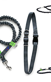 Dog Collar / Leash Adjustable/Retractable / Running Black Nylon