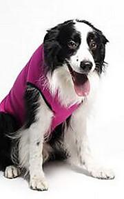 Собаки Плащи Розоватый Одежда для собак Весна/осень Звезды На каждый день Спорт