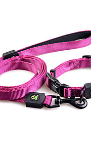 Chien Laisses Ajustable/Réglable Solide Nylon Orange Violet Vert