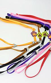 Caramella cane collare pet trazione corda cane artiglio stampa nylon corda cani collari gatto cane imbracatura animali domestici vendita