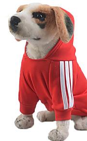 Hund Hettegensere Genser Hundeklær Fritid/hverdag Solid Grå Gul Rød Blå Rosa
