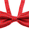 Dog Tie Spring/Fall - Red / Blue - Wedding - Nylon