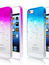 Bubbles Gradient Color Transparent Back Case for iPhone 5/5S(Assorted Color)