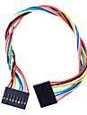 8 PIN Dupont fio conector fêmea 200 milímetros Comprimento 2,54 milímetros pitch - Multicolor