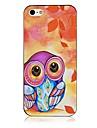 Для Кейс для iPhone 5 Чехлы панели С узором Задняя крышка Кейс для Сова Твердый PC для iPhone SE/5s iPhone 5
