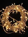 10M 9.6W Christmas Flash 100-LED Warm White Light Strip Light Lamp (EU Plug , AC 220V)