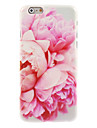Blossomy Rose Design PC Hard Case for iPhone 7 7 Plus 6s 6 Plus