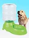 Собака Миски и бутылки с водой Животные Чаши и откорма Отражение Зеленый